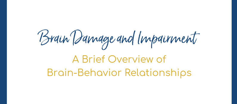 Brain Damage and Impairment – A Brief Overview of Brain-Behavior Relationships